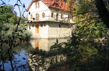 Geszner ház